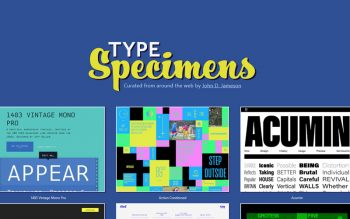 Type Specimens Typography Showcase